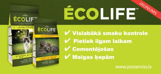 ECOLIFE-shelftalker-3-copy_web